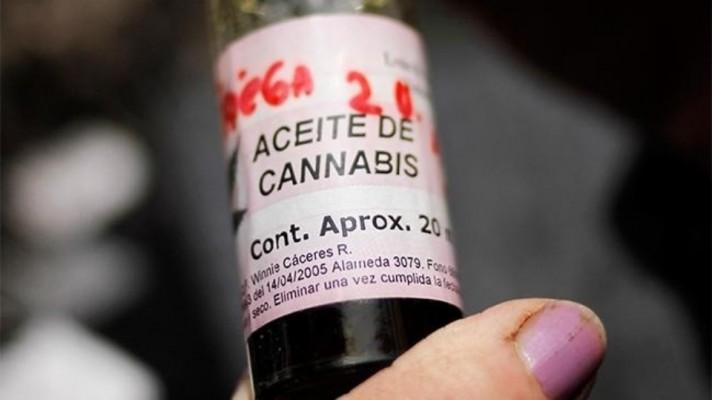 cannabis-e1510543452289