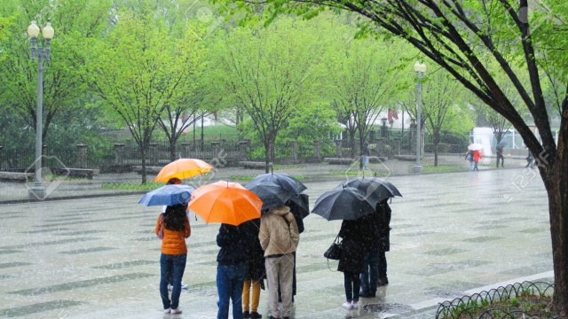 People with umbrellas on a rainy day