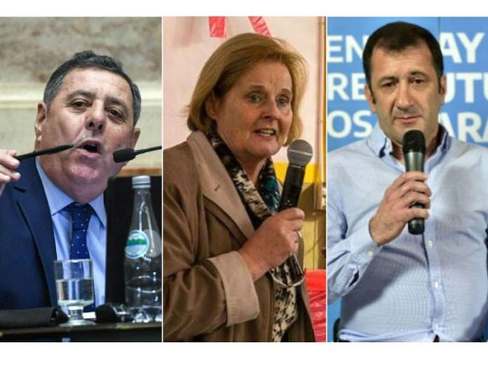 p2-senadores